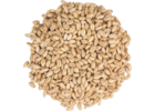Briess Raw White Wheat