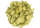 Citra® Brand HBC 394 Hops (Whole Cone)