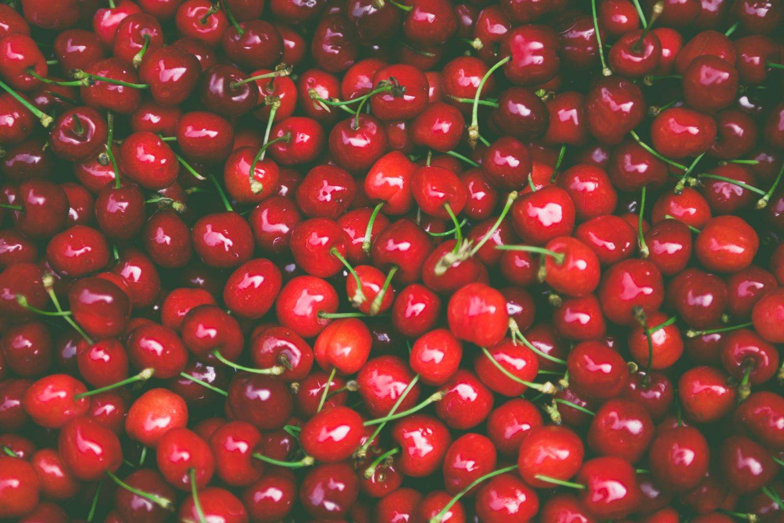 A bowl of cherries for brewing
